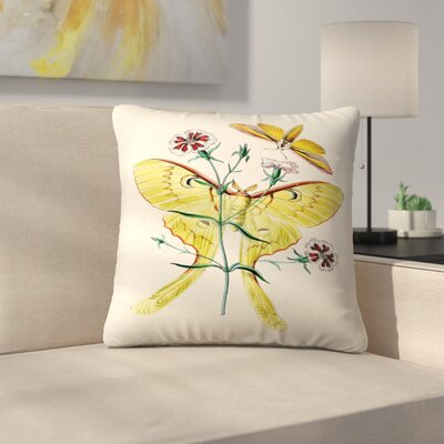 Yellow Moth Throw Pillow Size: 16 x 16