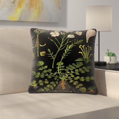 Cuckoo Flower Throw Pillow Size: 16 x 16