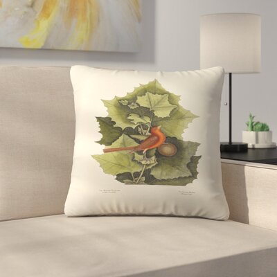 The Redbird Throw Pillow Size: 18 x 18