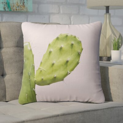Auburn Closeup Throw Pillow Size: 18 H x 18 W x 5 D