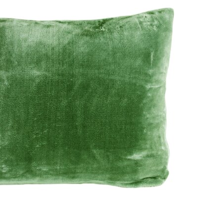Cairns Velvet Sham Color: Kale Green