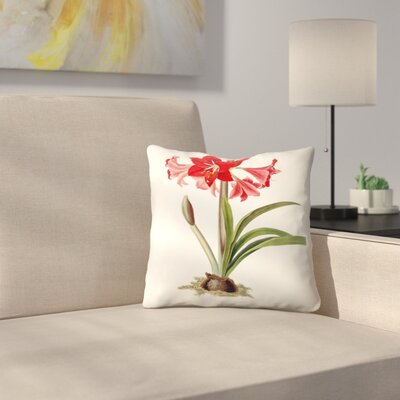 Amaryllis Johnsoni Throw Pillow Size: 20 x 20