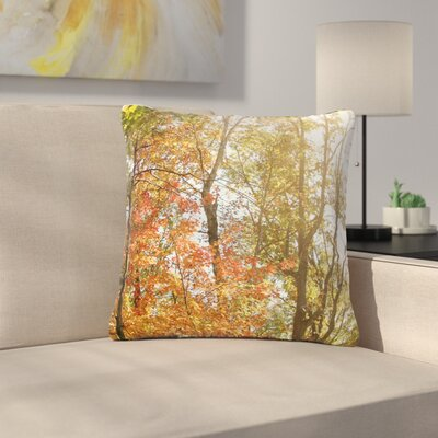 Sylvia Coomes Autumn Trees Outdoor Throw Pillow Size: 16 H x 16 W x 5 D, Color: Green/Orange