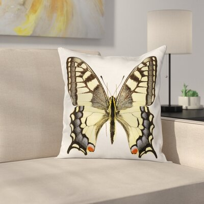 Wild Papilio Square Cushion Pillow Cover Size: 16 x 16