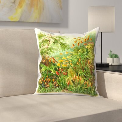 Haeckel Plate 72 Throw Pillow Size: 14 x 14