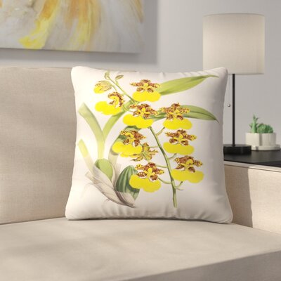 Fitch Orchid Odontoglossum Londesboroughianum Throw Pillow Size: 18 x 18
