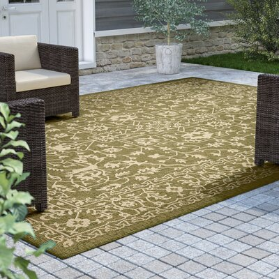 Applecrest Green Outdoor Area Rug Rug Size: Rectangle 4 x 6