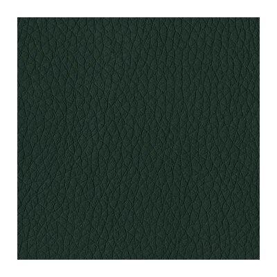 Digiovanni Armchair Upholstery: Black
