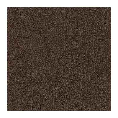 Digiovanni Armchair Upholstery: Brown