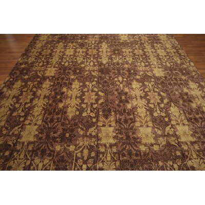 One-of-a-Kind Cale Hand-Knotted Wool Brown Area Rug