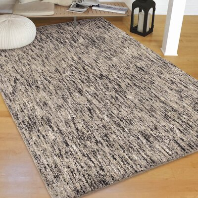 Castorena Solid Design Silver/Gray Area Rug Size: Rectangle 53 X 76