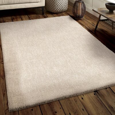 Catalano Solid Design Cream/Ivory Area Rug Size: Rectangle 9 x 13