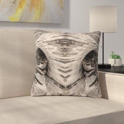 Bruce Stanfield Dam Reticulation the Void Outdoor Throw Pillow Size: 16 H x 16 W x 5 D