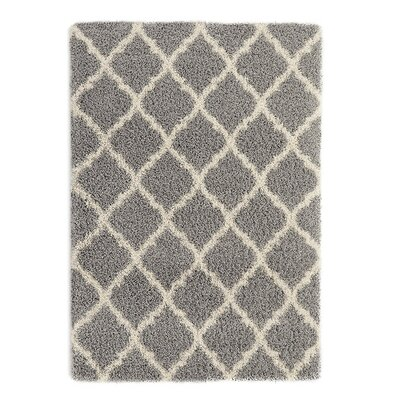 Radford Gray Shaggy Area Rug Rug Size: Rectangle 67 x 93