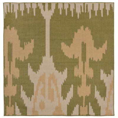 Gorski Ikat Green/Ivory Indoor/Outdoor Area Rug Rug Size: Square 79