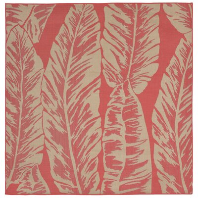 Hunley Banana Leaf Rust/Beige  Indoor/Outdoor Area Rug Rug Size: Square 79