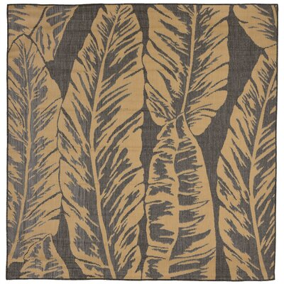 Hunley Banana Leaf Gray/Beige Indoor/Outdoor Area Rug Rug Size: Square 79