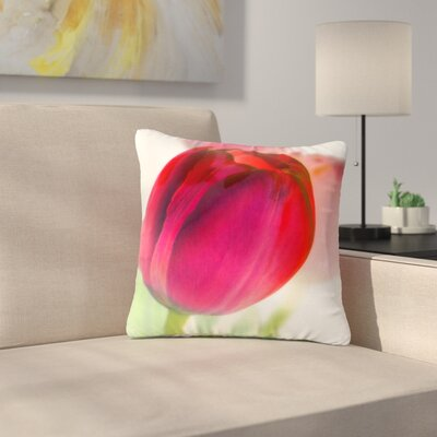 Alison Coxon Tulips Outdoor Throw Pillow Size: 16 H x 16 W x 5 D