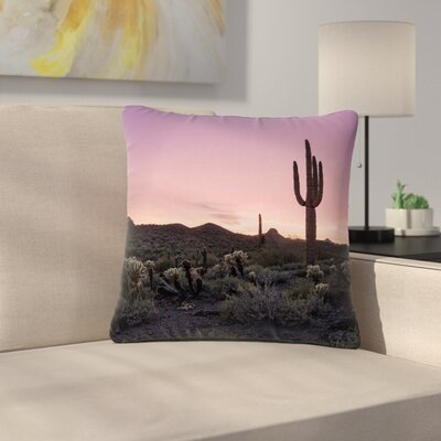 Tucson Sunset Tags Outdoor Throw Pillow Size: 16 H x 16 W x 5 D