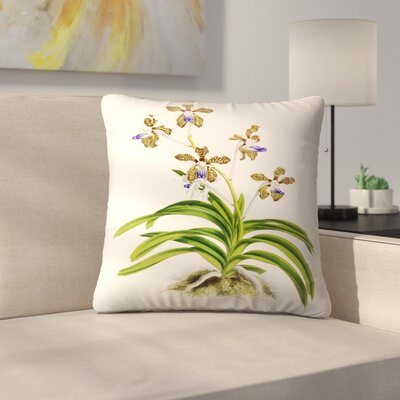 Fitch Orchid Vanda Roxburghii Throw Pillow Size: 20 x 20