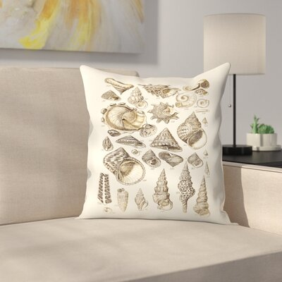 Shells 2 Throw Pillow Size: 14 x 14