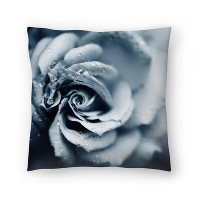 Powder Throw Pillow Size: 14 x1 4
