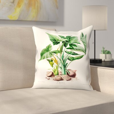 Flored Amerique Lemalanga Throw Pillow Size: 20 x 20