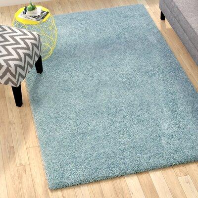 Starr Hill Aqua Blue Area Rug Rug Size: Rectangle 51 x 8