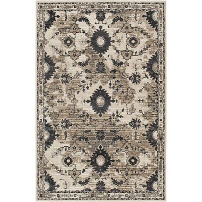 Huang Archwood Ivory/Black Area Rug Rug Size: Rectangle 53 x 77