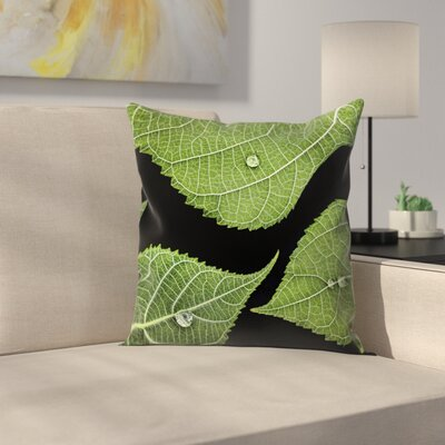 Maja Hrnjak Drops Throw Pillow Size: 16 x 16