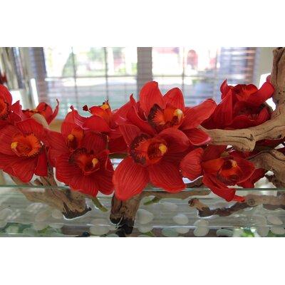 Driftwood Cymbidium Orchids Centerpiece in Glass Planter 52755C345D3C4AE7AFDD2179A37EDDCF