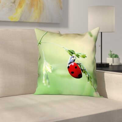 Duriel Double Sided Print Square Pillow Cover Size: 26 x 26