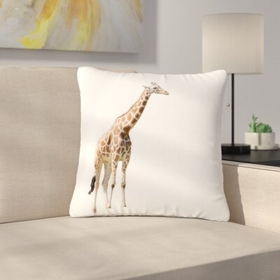 Sylvia Coomes Giraffe Animals Photography Outdoor Throw Pillow Size: 16 H x 16 W x 5 D