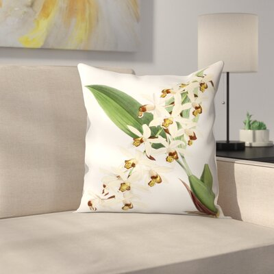 Fitch Orchid Caelogyne Massangena Throw Pillow Size: 18 x 18