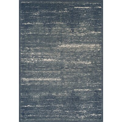 Hagopian Denim Area Rug Rug Size: Rectangle 710 x 107