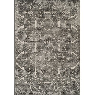 Hagopian Pewter Area Rug Rug Size: Rectangle 96 x 132