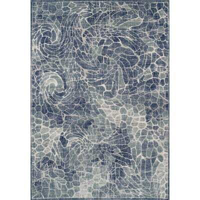 Hagopian Denim Area Rug Rug Size: Rectangle 96 x 132