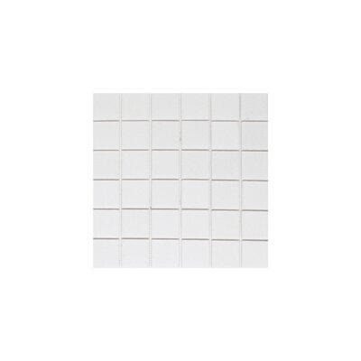Thassos 2 x 2 Marble Mosaic Tile in White
