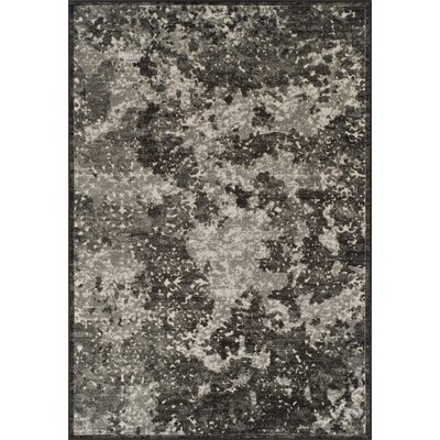 Hagopian Graphite Area Rug Rug Size: Rectangle 96 x 13