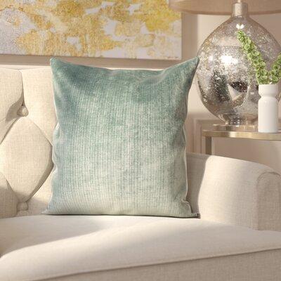 Celinda Plain Velvet Throw Pillow Size: 20 H x 20 W