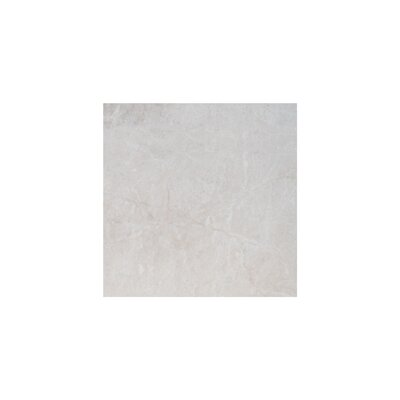 Olympos Polished 12 x 12 Marble Field Tile in Beige