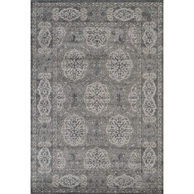 Honig Transitional Gray Area Rug Rug Size: Rectangle 2' x 3'