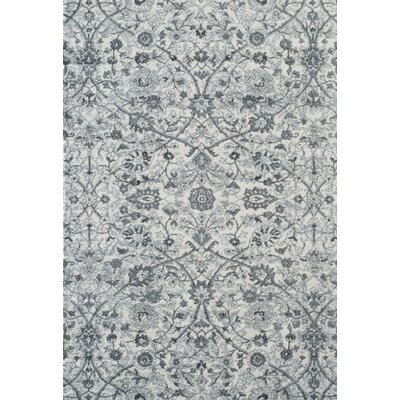 Honig Transitional Light Blue Area Rug Rug Size: Rectangle 89 x 119