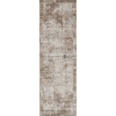 Cadence Transitional Platinum Area Rug