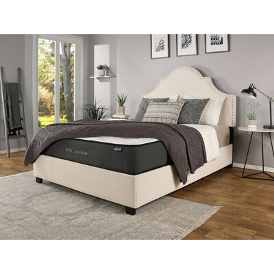 Stepanie Upholstered Panel Bed with Mattress Size: King