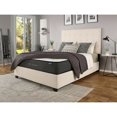 Almendarez Upholstered Panel Bed with Mattress Size: California King, Color: Ivory