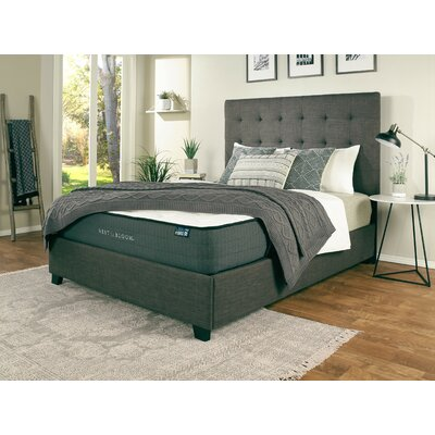 Almendarez Upholstered Panel Bed with Mattress Size: Queen, Color: Gray