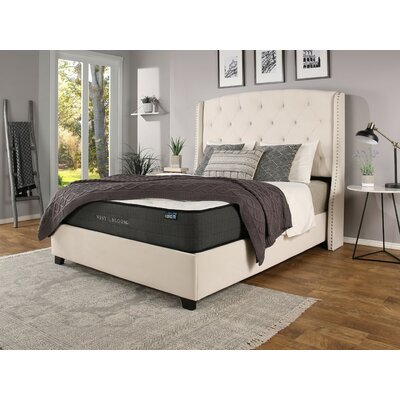 Chenery Upholstered Panel Bed with Mattress Size: Queen, Color: Ivory