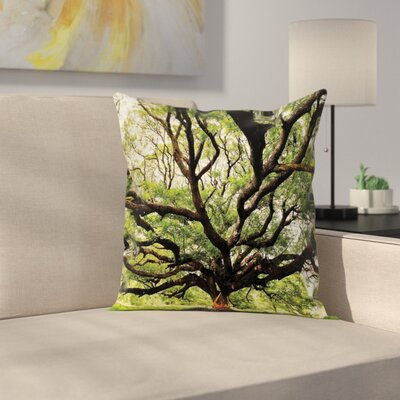 Big Tree Pillow Cover Size: 16 x 16