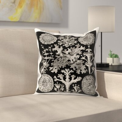 Haeckel Plate 83 Throw Pillow Size: 16 x 16